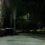 GROUNDS AT NIGHT