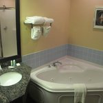 Foto van Comfort Suites South Bend