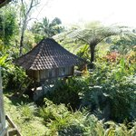 Foto de Bali Mountain Retreat