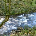 River at Tarr steps
