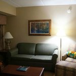 Homewood Suites by Hilton Charlotte Airport / Coliseum照片