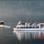 Boat Trips on Lake Titisee