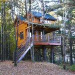 This is the treehouse located behind the lodge and by a pond.