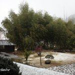 Foto de East Huangshan International Youth Hostel