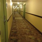 Holiday Inn Express Hotel & Suites Fort Worth Downtown照片