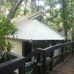 Foto van Daintree Eco Lodge & Spa