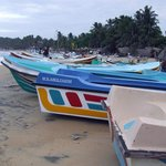fising boats on the beach in the evening