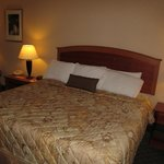 Ramada Inn Mitchell : room with bed
