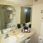 Ramada Inn Mitchell : bathroom