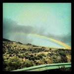 Rainbow as we drove up to the hotel!