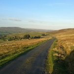 Explore the roads over the moors & listen out for Grouse, Curlew & Oystercatchers as you go