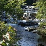 Aysgarth Falls,just 5miles downdale. Walk,cycle or drive to see these beautiful Falls&Visitor Ce