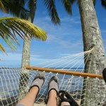 view from our hammock