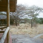 Open wildlife viewing area in front of personal lodge