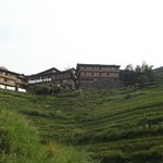the inn on top of the rice field
