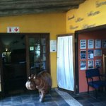 Photo de Umlilo Lodge B&B