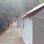 Clean and well maintained tent cabin