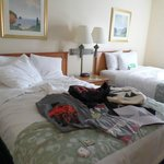 Foto de La Quinta Inn & Suites Tampa East Fairgrounds