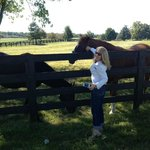 Rosecrest's friendly Thoroughbreds