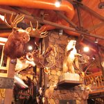 Days Inn Thermopolis: hunters trophies restaurant