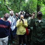 birdwatching in kibale forest national park