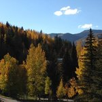 Stunning fall view from our room!