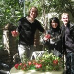 The beautiful Maia in her beautiful courtyard (Pomegranates were in season on our last visit).