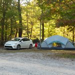 Φωτογραφία: Greenbriar Island Campground
