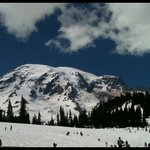 Paradise Inn at Mount Rainier resmi