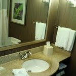 Φωτογραφία: Hilton Garden Inn Hartford North/Bradley Int'l Airport