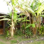 Photo of Ana Rapu Guest House