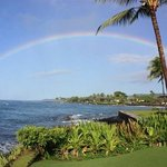 rainbow from Kuhio Shores front lawn