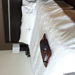 Hampton Inn Portland Downtown - Waterfront의 사진