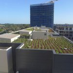 Rooftop garden on adjoining block