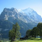 Eiger balcony view