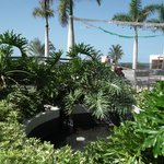 Photo de Holiday Village Tenerife