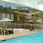 Holiday Inn Des Moines NW - Swimming Pool Area