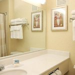 Φωτογραφία: Fairfield Inn Davenport