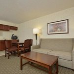 Foto di Hampton Inn East Aurora