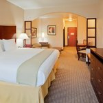 Bilde fra Holiday Inn Express Hotel & Suites Mineral Wells