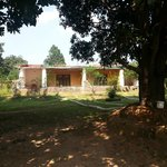 Photo de Kanha Village Eco Resort