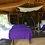 Фотография Enkerende Tented Camp