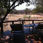 Foto van Monwana Game Lodge