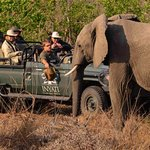 Sights on Inyati game drive