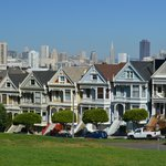 Painted ladies at Steiner Street