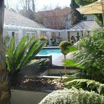 The lovely garden and pool