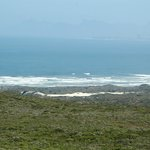 Foto de Grootbos Private Nature Reserve