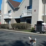 Foto de Residence Inn Atlantic City Somers Point