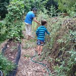 Sue and our son collecting tomatoes