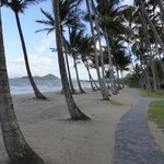 Photo de Oasis Palm Cove Hotel